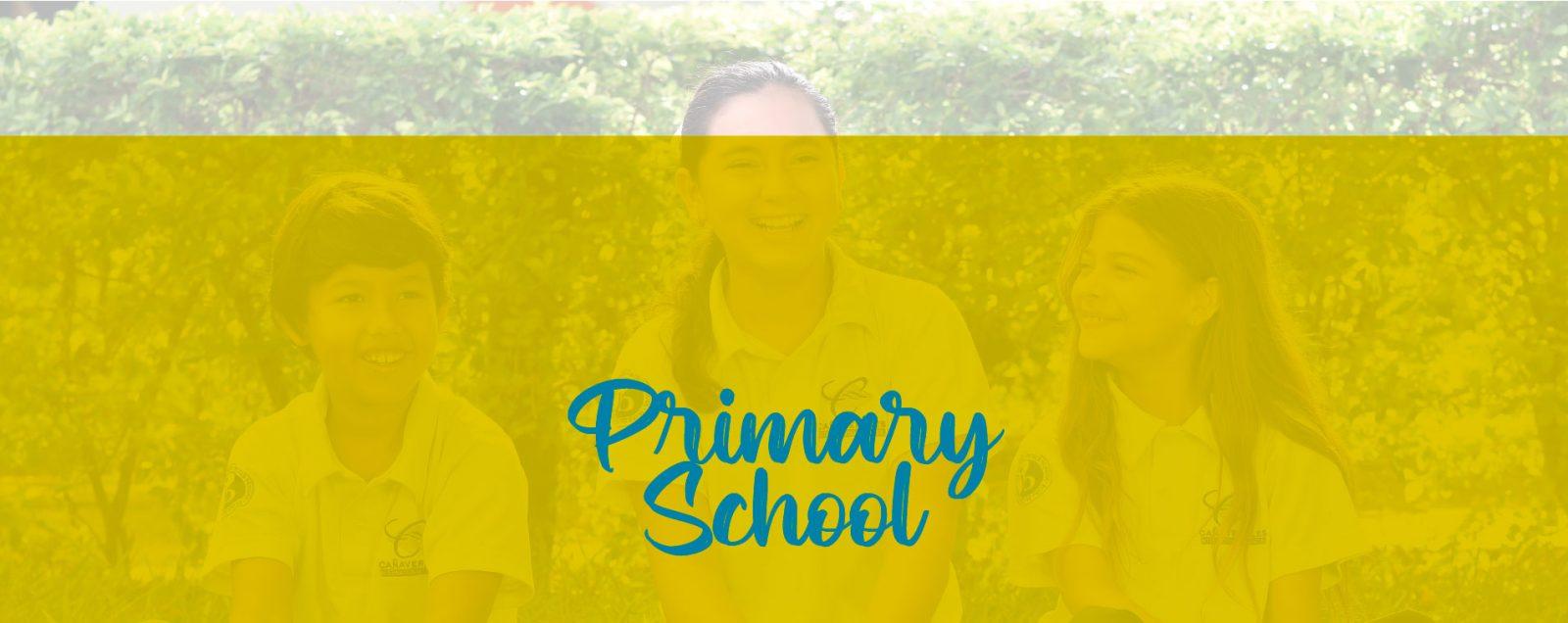 canaverales_colegioprimaria