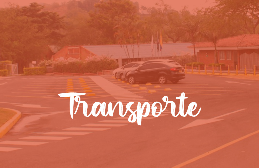 canaverales_transmoviles