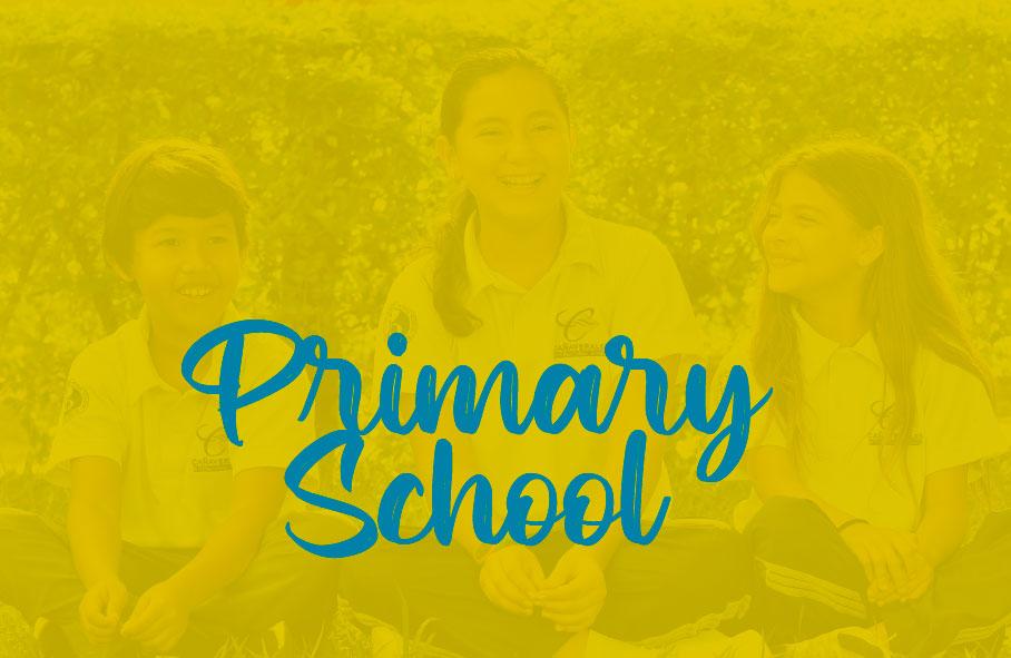 primaria-movile