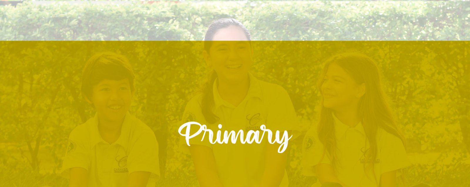canaverales_primaryescritorio